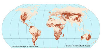 Map showing Global Distribution of Croplands in 2000