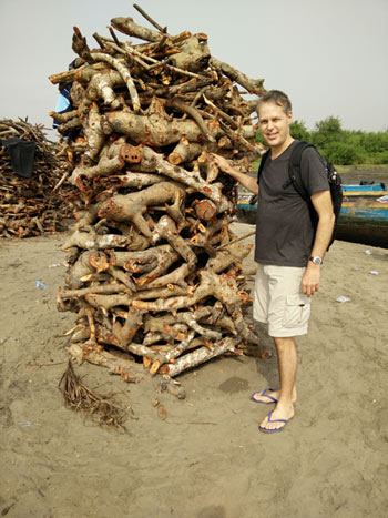 Alex de Sherbinin, associate director for Science Applications at CIESIN, stands by a pile of mangrove wood harvested for smoking fish.